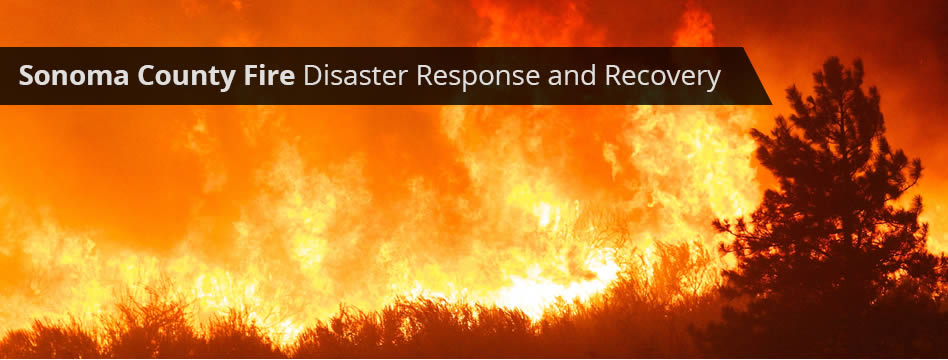 Sonoma County Fire Disaster Response and Recovery
