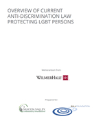 LGBT Laws Overview